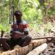 Papua Sagu