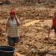 deforestation in West papua